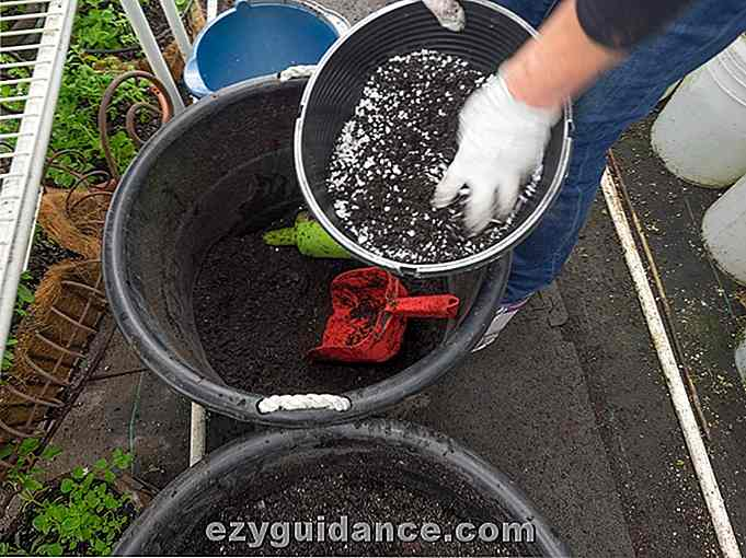 Hur man gör din egen Super Powered Potting Soil