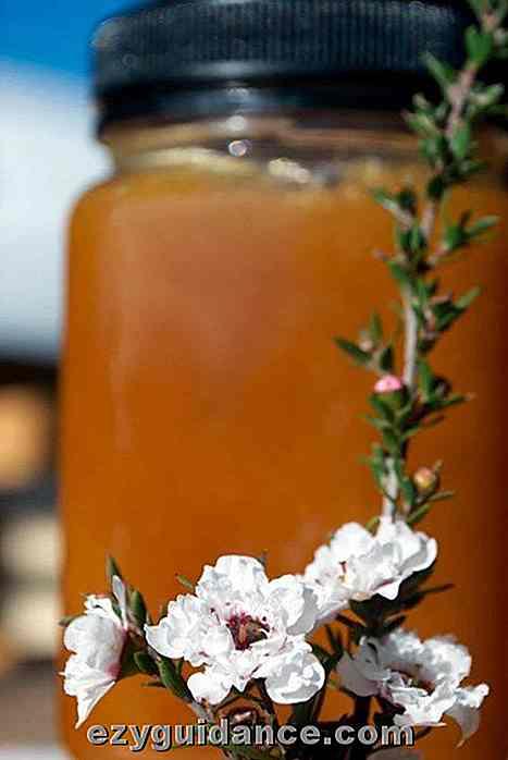 miel para el tratamiento de la tiña